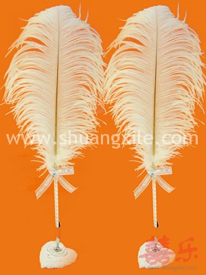 Classical Feather Signature Pen Package