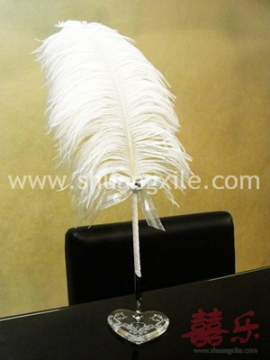 Genuine Feather Signature Pen (Medium)