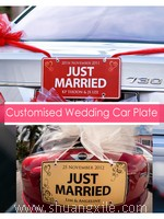 Just Married Wedding Car Plate~New!